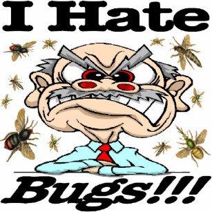 i_hate_bugs_keychain-r7176fa22fd2a44c5b981daefd6f4cb14_x7j3z_8byvr_307133335531.jpg