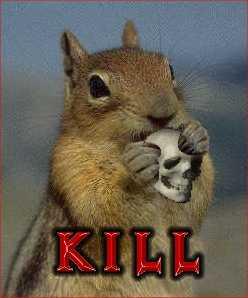 killersquirrel