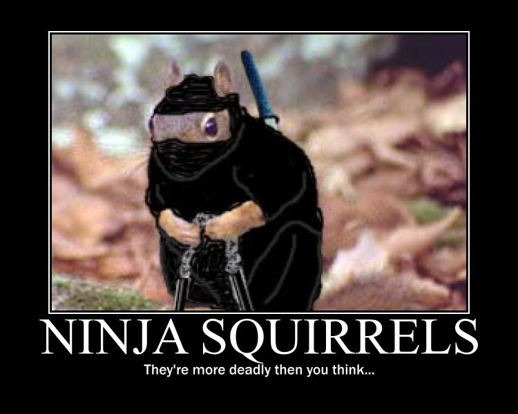 ninja_squirrel_demotivational_by_stickbomber