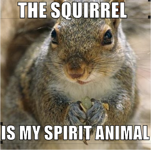 spiritsquirrel