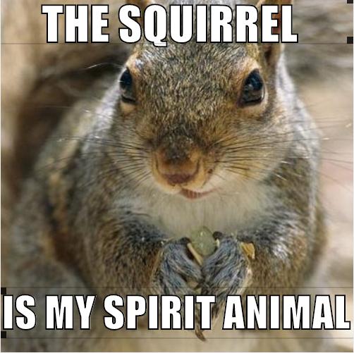 spiritsquirrel