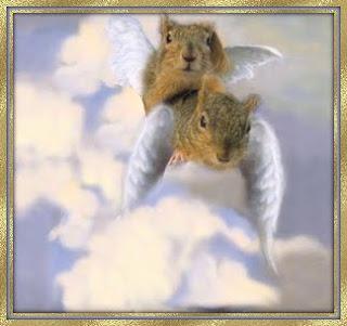 squirrel angel children